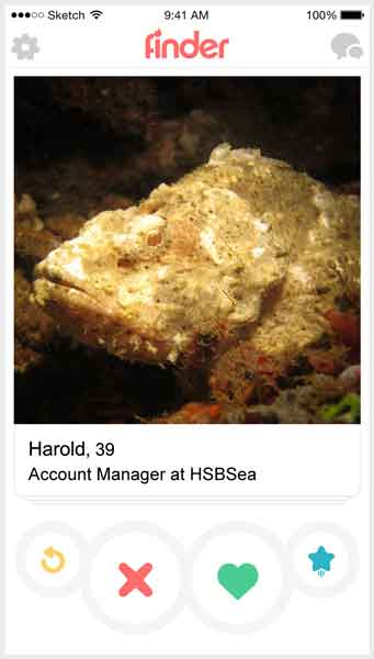 If fish were on Tinder 4