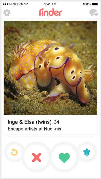 If fish were on Tinder 5