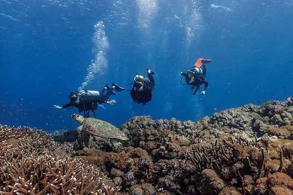 3 drifting divers